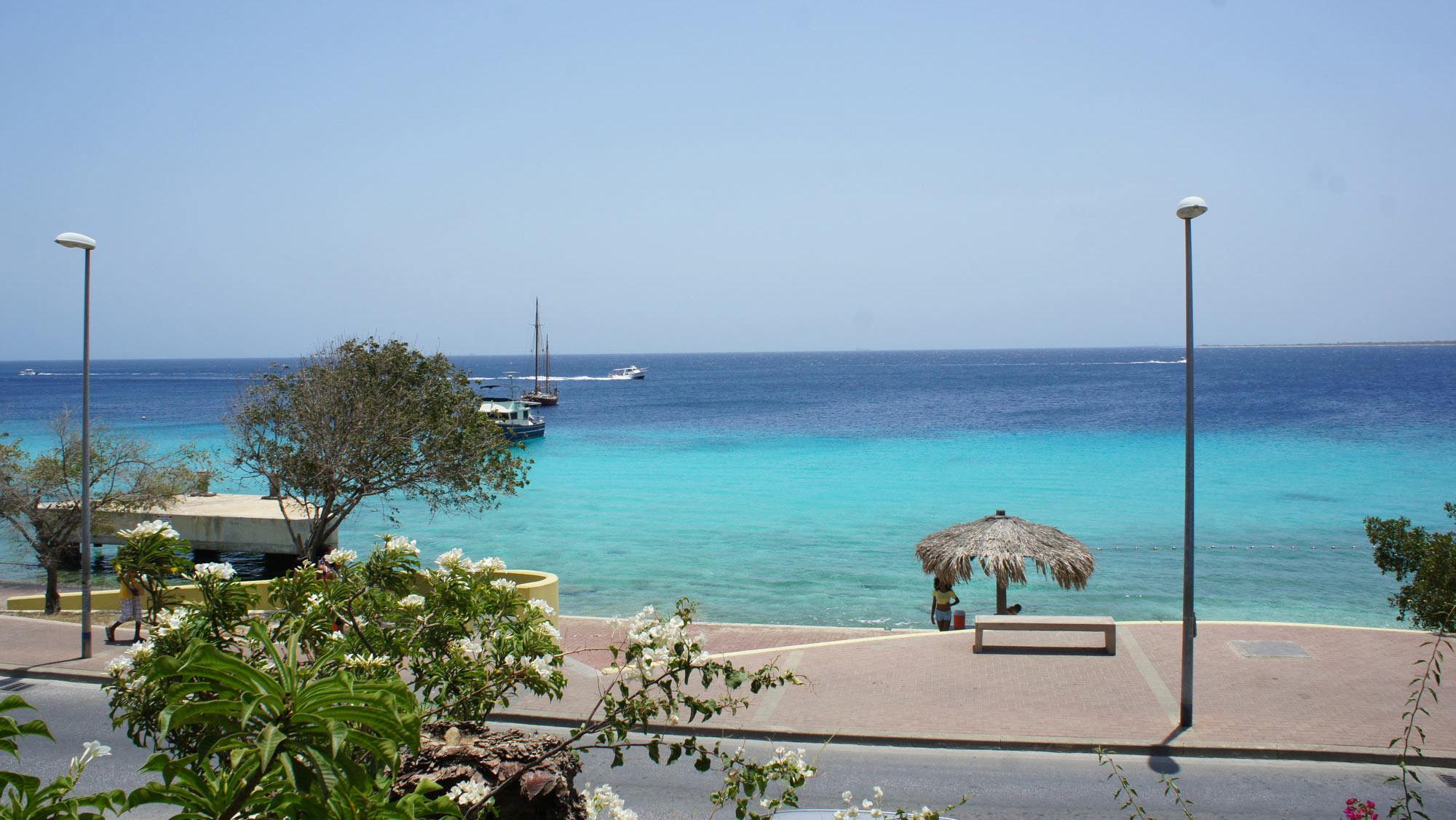 Chachacha Beach Ocean View